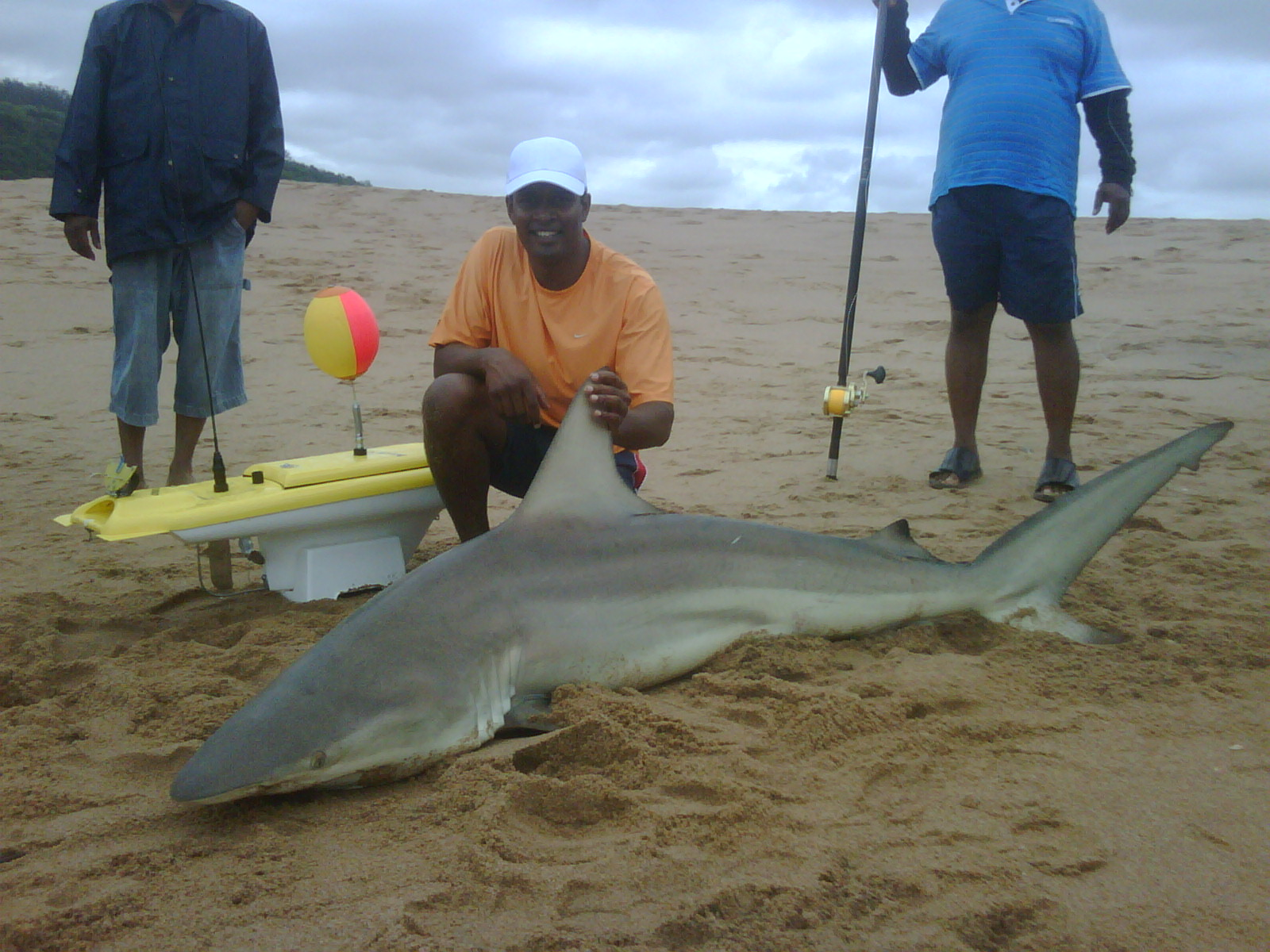 Great Shark Catch!